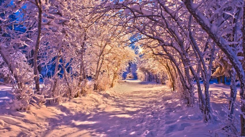 Покемон го зимой
