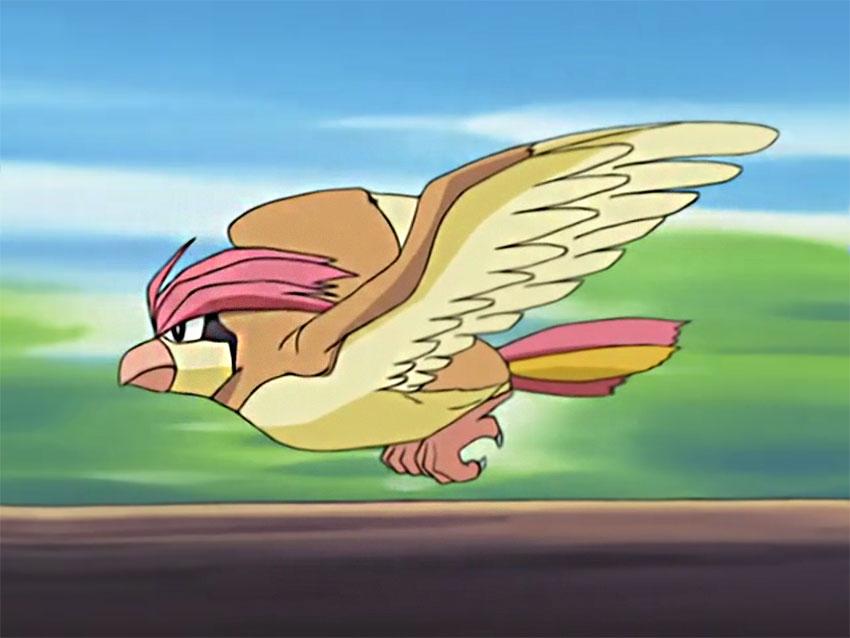 Pidgeotto скорость полета