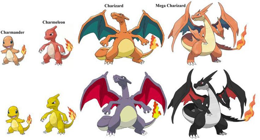 Все стадии эволюции Чаризарда в Покемон Го