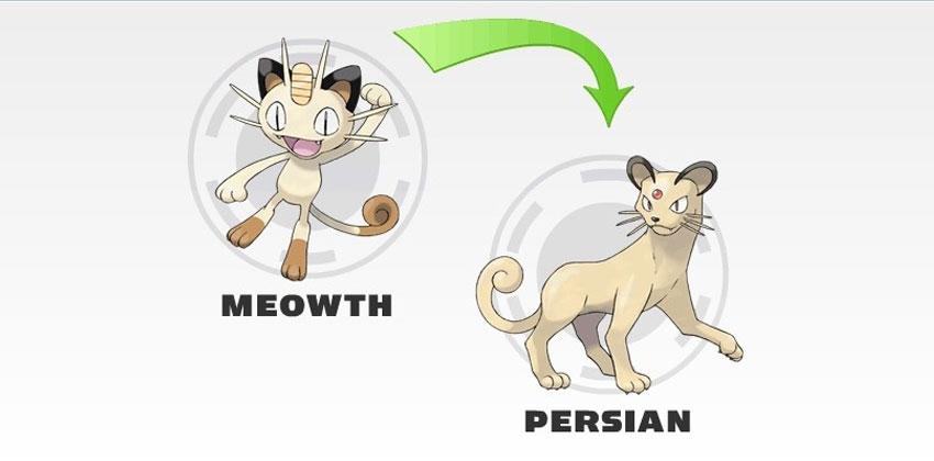 Эволюция Персиана в Покемон Го - стадии