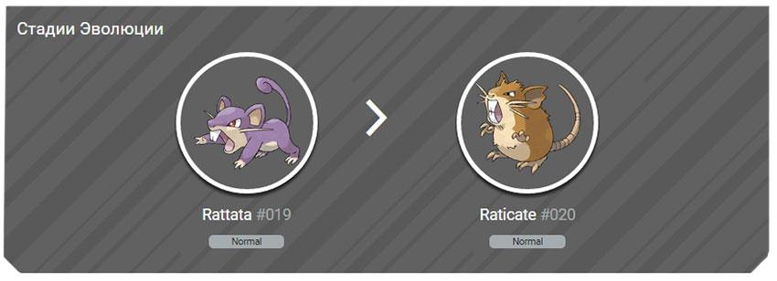 Все стадии эволюции Раттаты в Покемон Го