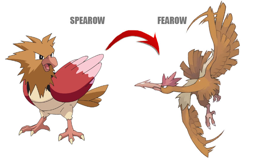 Эволюция Спироу в Покемон Го - Spearow Pokemon Go