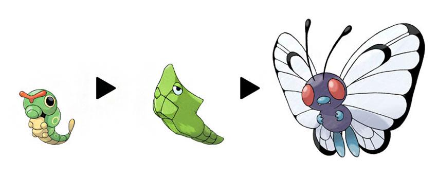 Все стадии эволюции Баттерфри в Покемон Го