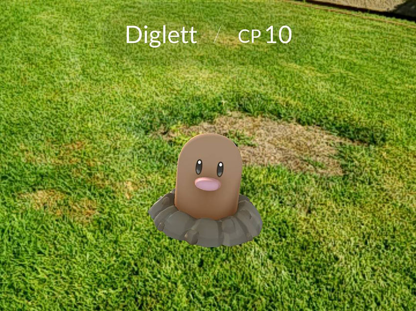 Диглетт в Покемон Го - эволюция Diglett в Pokemon GO № 050