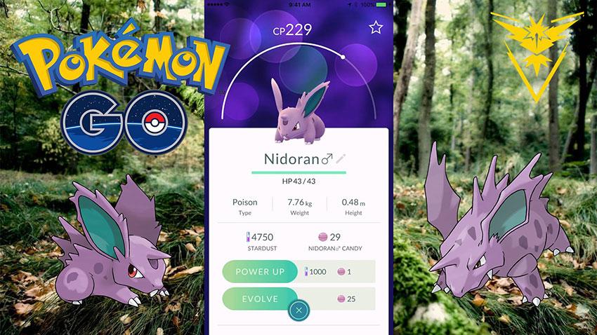 Покемон-самец Нидоран Покемон Го - Nidoran Pokemon GO 032