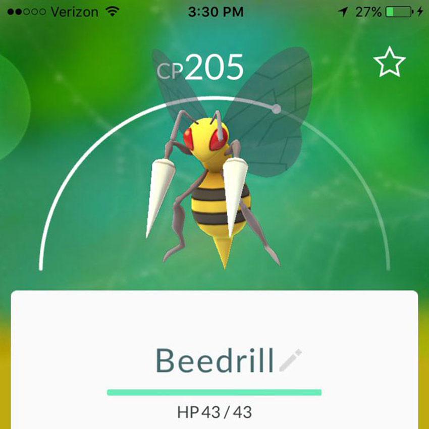 Pokemon go Бидрилл - атаки в Покемон Го