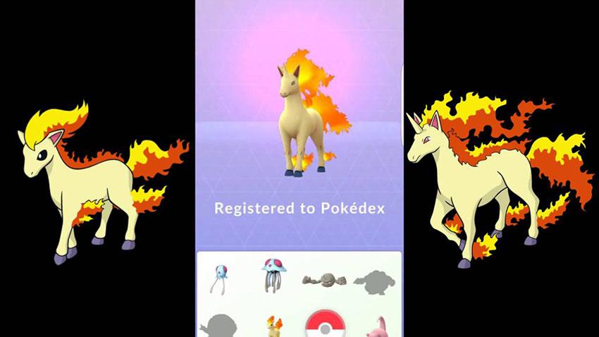 Эволюция Рапидаш в покемон Го - Rapidash Pokemon Go - в кого эволюционирует